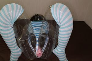 ラボボディAKIにボクのオナペットを装着した写真