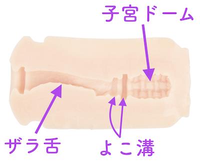 ザラ舌と子宮ドームの2連撃で射精へと強烈に導かれる!
